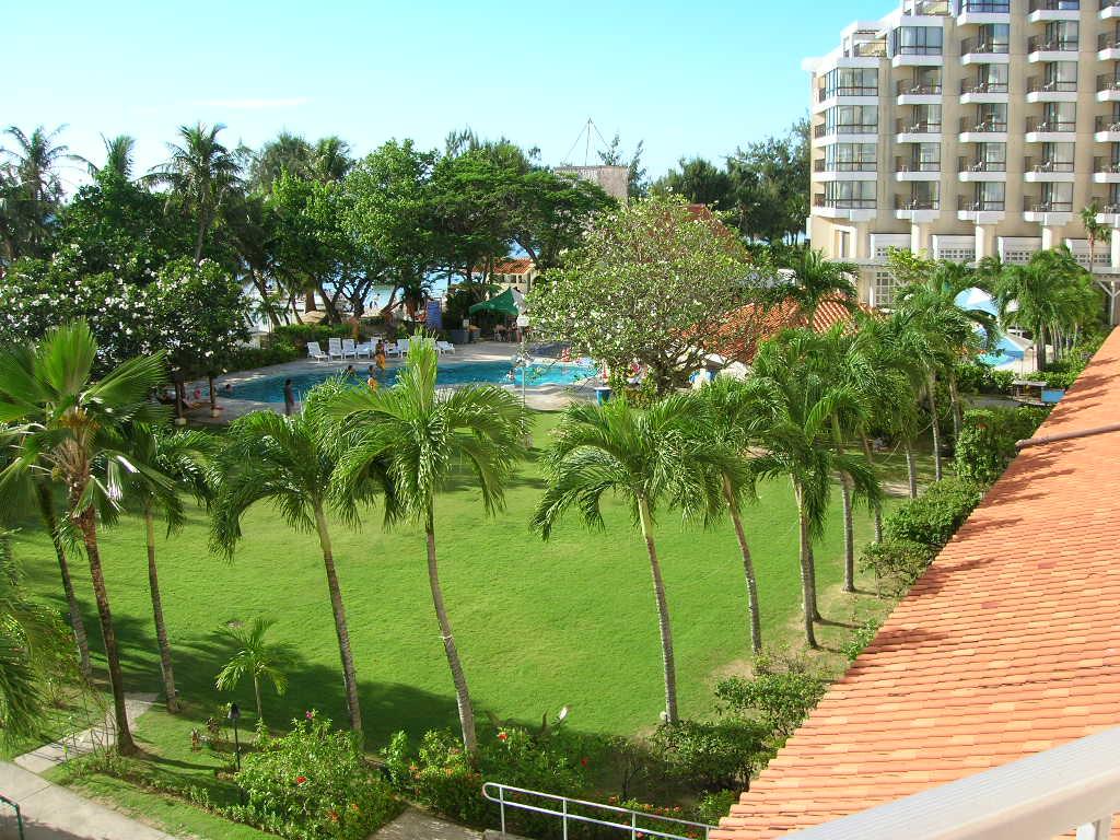 ハファダイビーチホテル庭