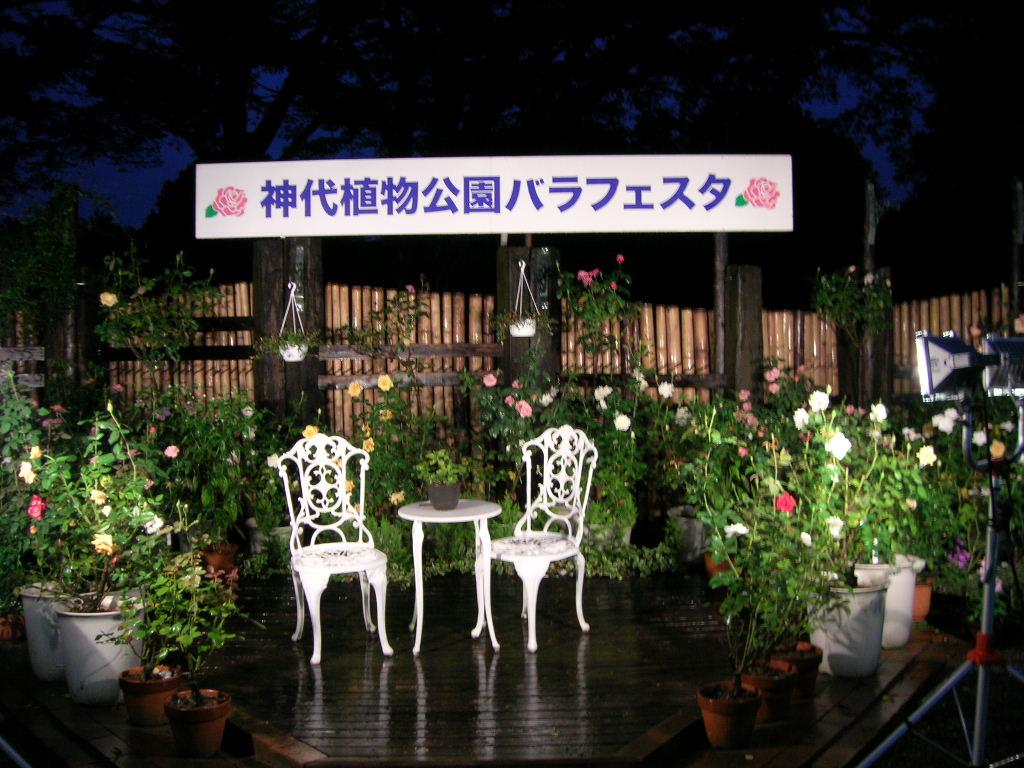 神代植物公園バラフェステイバル