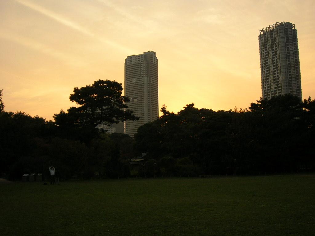 浜離宮公園からの景色