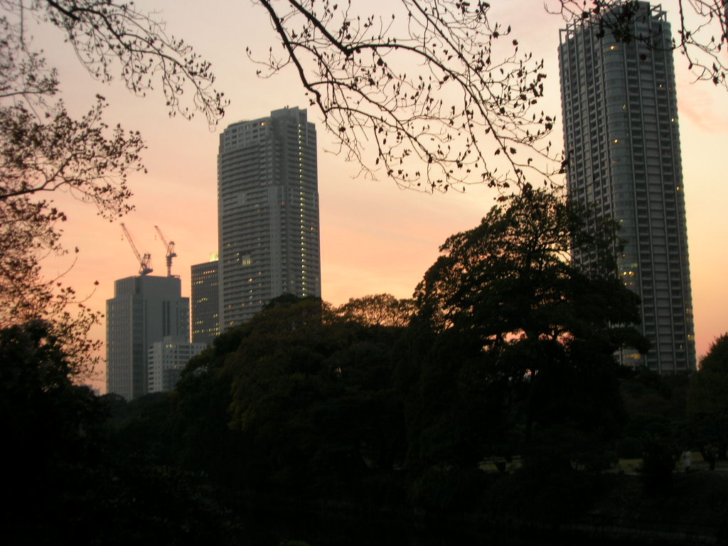 浜離宮恩賜公園から見た東京
