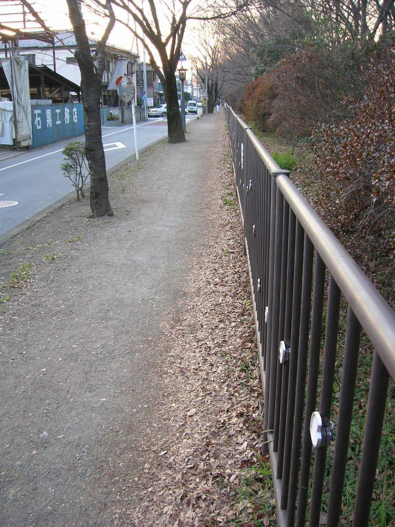 五日市街道の歩道