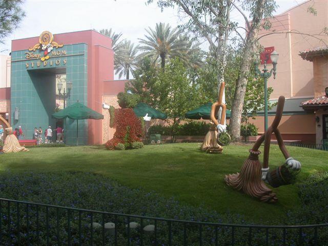 ディズニーワールドの植栽