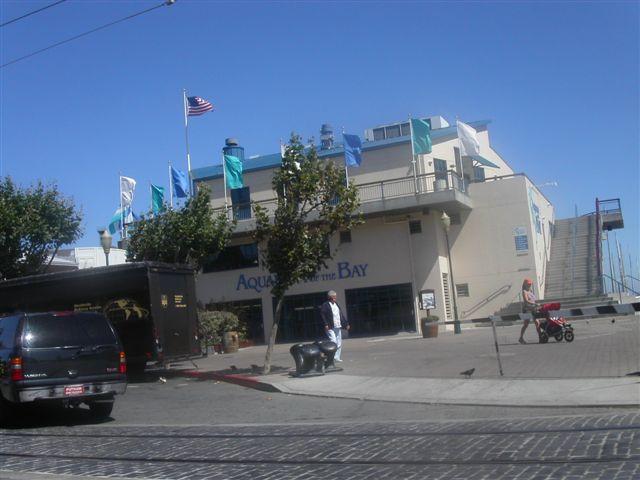 サンフランシスコ Aquarium Of The Bay