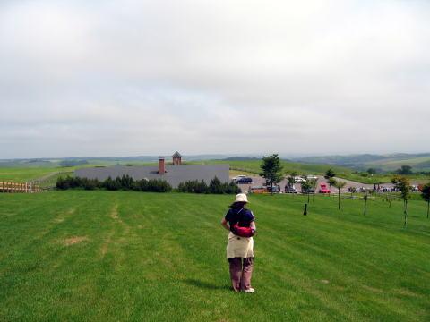 地平線の見える大牧場
