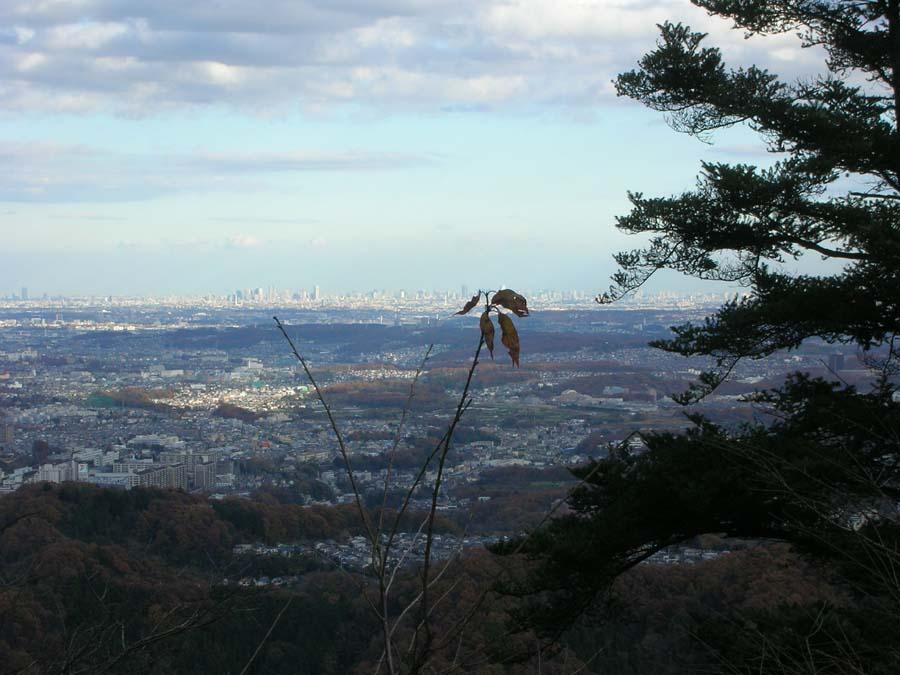 高尾山から都内を遠望