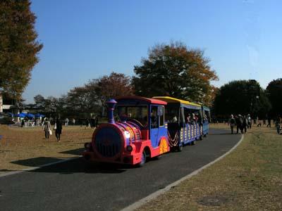 国営立川昭和記念公園