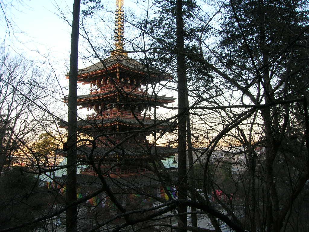 早春の五重塔