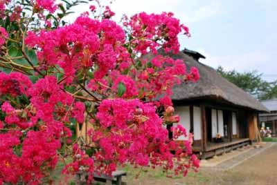 狛江市立古民家園