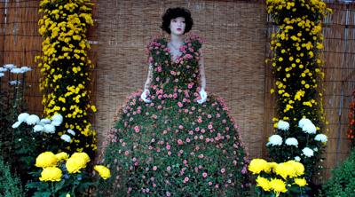 高幡不動の菊祭り