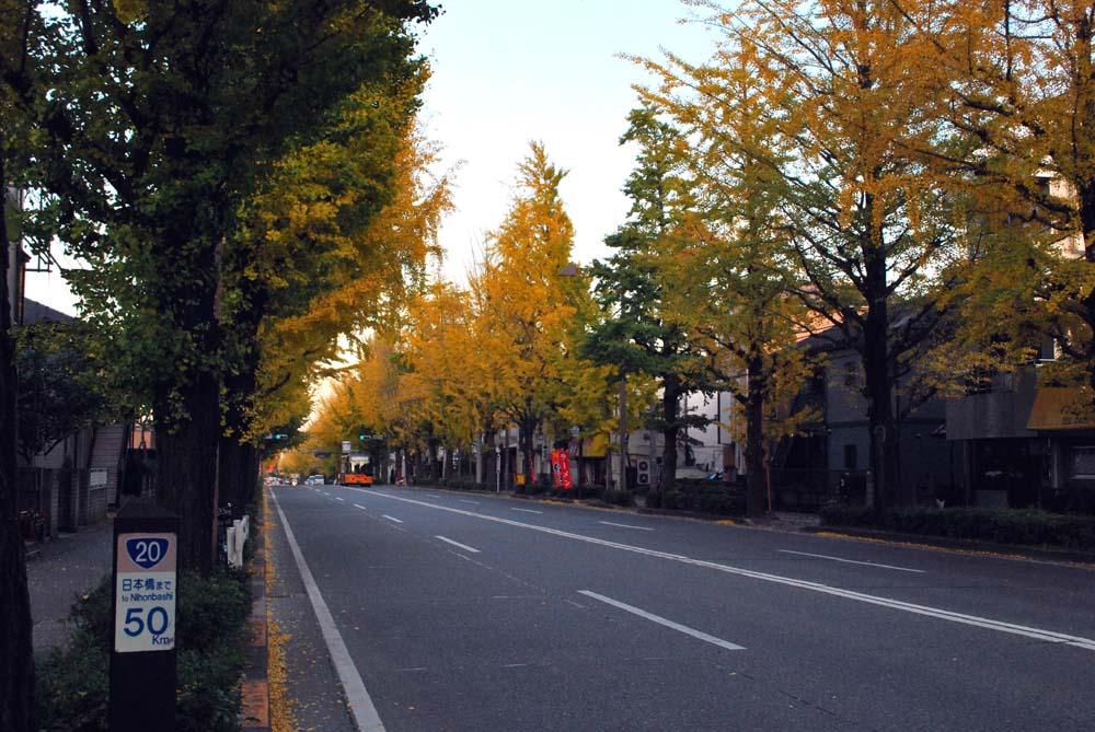 甲州街道、御陵と高尾駅の間の甲州街道R20