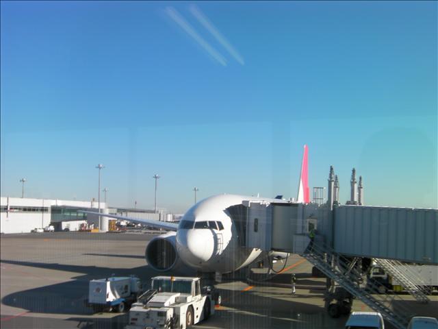 JAL8877便 上海往き