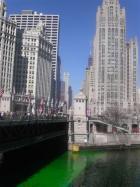 シカゴ St Patrick's...