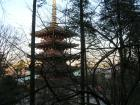 高幡不動尊 五重塔