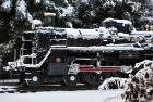 東京、小金井公園、雪...